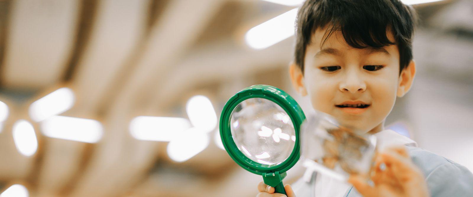 Experience Learning | Victoria Kindergarten, Nursery , Infant & Toddler Programme